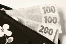 Stačí jen každý měsíčně uhradit minimální splátku. Víc není potřeba.