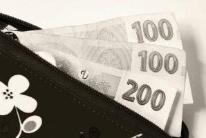 Půjčka bez doložení příjmu 25000 Kč do 10 minut